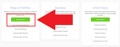 Bluehost選擇要架設的網站類型